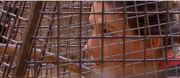 Camille Cerf terrorisée face à des tigres à Fort Boyard (vidéo)